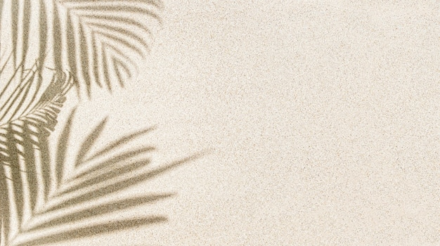 Banner de sombra em folha de palmeira na areia, vista superior, espaço de cópia