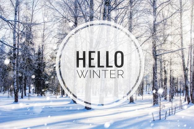 Banner olá inverno. a foto do olá inverno. nova temporada. natureza. paisagem de inverno. paisagem com texto.