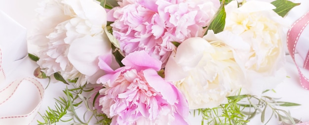 Banner romântico, close-up de flores delicadas peônias brancas. pétalas de rosa perfumadas, fundo de romance abstrato, cartão de flor suave e pastel