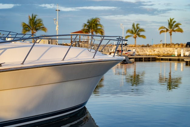 Barco a motor ancorado na marina tropical com palmeira e céu azul para viagens e conceito de férias