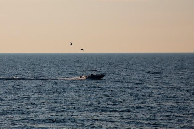 Barco a motor navegando no mar em alta velocidade. uma gaivota paira sobre o barco. pesca marítima ao amanhecer
