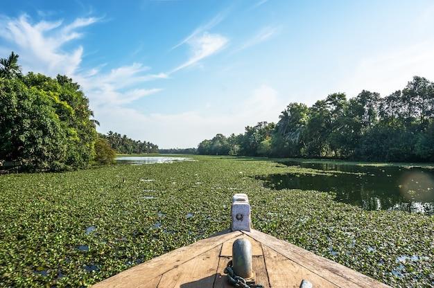 Barco flutua no rio. a vista do barco em seu nariz. eyhorniya royal flowers