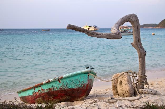 Barco velho é amarrado a um galho de árvore à beira-mar