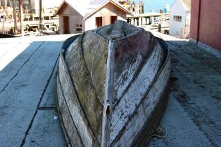 Barco velho, meio ambiente