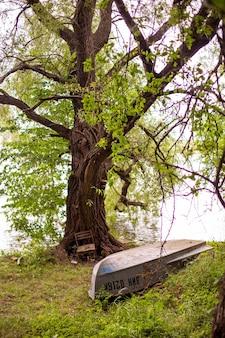 Barco virado para baixo no chão coberto de grama na margem do lago