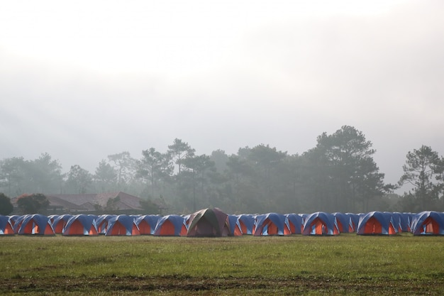 Barraca de acampamento ao ar livre na grama com névoa da manhã em tailândia