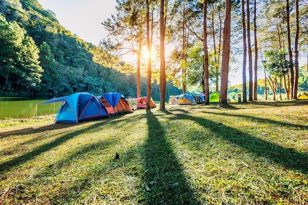 Barracas de acampamento sob pinheiros com luz do sol no lago pang ung, mae hong son na tailândia.