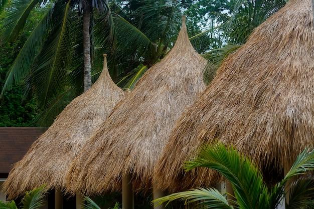Barracas de gazebo com teto de palha para turistas em praia entre coqueiros