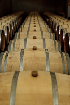 Barricas de carvalho de vinho na vinícola