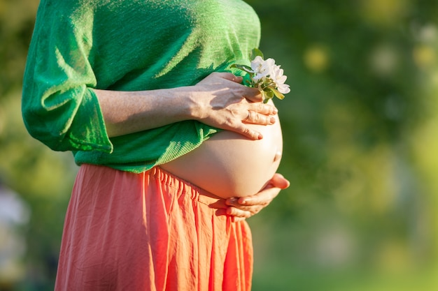Barriga grávida nua com flor