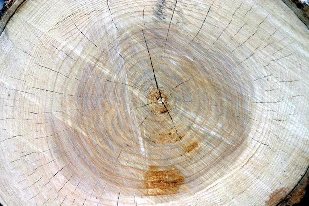 Barril de madeira serrada. fundo natural