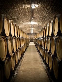 Barris de vinho em uma adega, perspectiva, foco seletivo