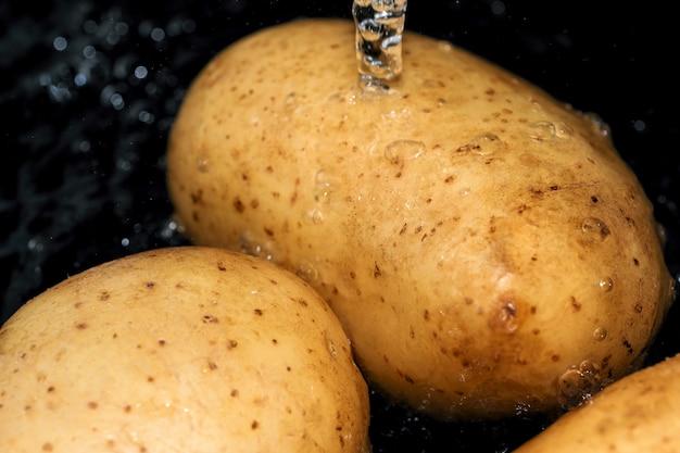 Batatas crus jovens com a casca são lavadas em água limpa antes de serem cozinhadas macrofotografia em close-up
