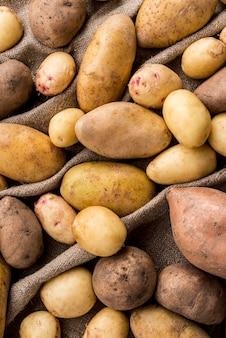 Batatas do close-up na roupa