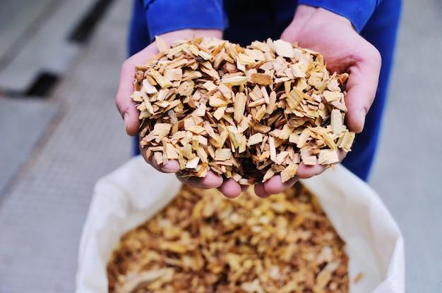 Batatas fritas para a salsicha fumeiro close-up