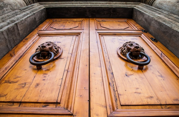 Batente de cabeça de leão em uma velha porta de madeira na toscana - itália