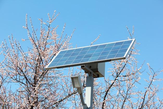 Bateria solar contra a parede de árvores floridas e o céu