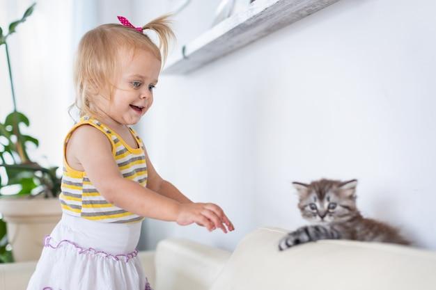 Bebê brincando com um gatinho no sofá