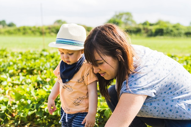 Bebê com chapéu de palha colhendo morangos em um campo de morangos