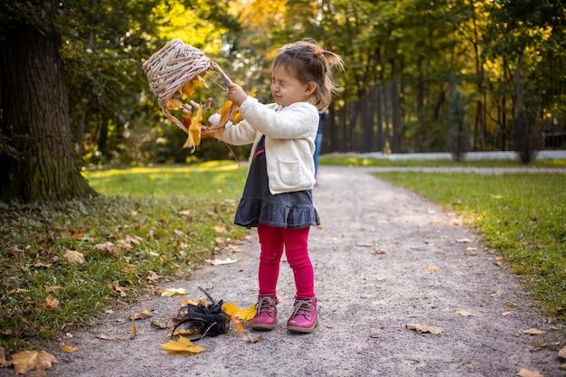 Bebê fofo brincando com a cesta e folhas de bordo na floresta de outono