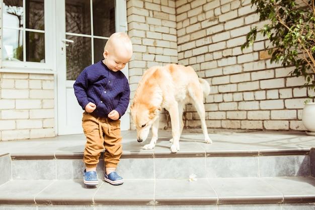 Bebê fofo e cachorro gentil na varanda da casa