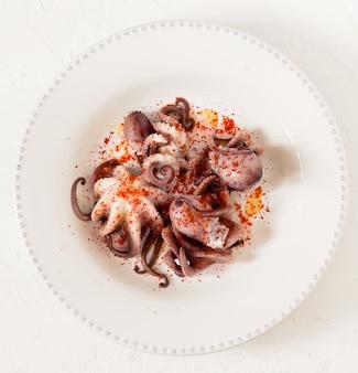 Bebê octopuse
