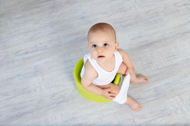 Bebé pequeno, 8 meses de idade, sentado num penico, sanita,