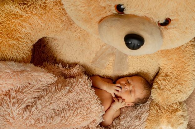 Bebê recém-nascido dormindo com ursinho de pelúcia