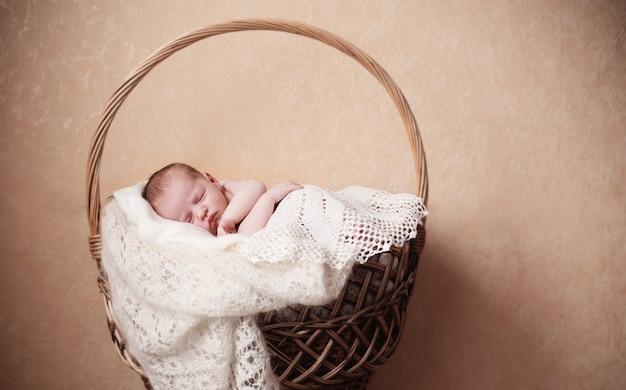 Bebê recém-nascido na cesta