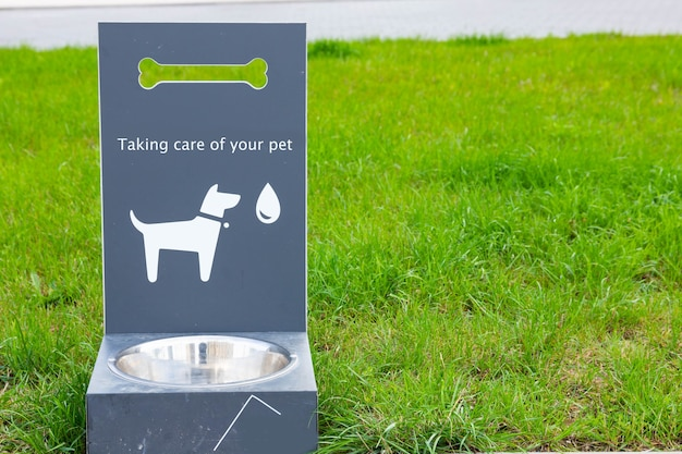 Bebedor portátil de água para animais de estimação para cães e gatos na grama verde.