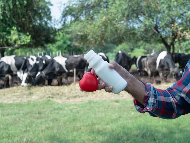 Beber leite saudável bom com leite fazenda e rebanho vacas. fundo