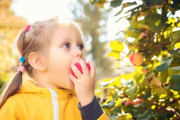 Bebezinho come maçãs sazonais