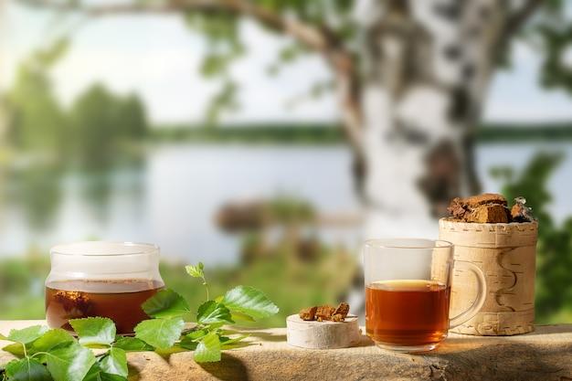 Bebida de cura de bétula cogumelo chaga e pedaços de cogumelo chaga em desfocar o pano de fundo da árvore de vidoeiro perto do lago.