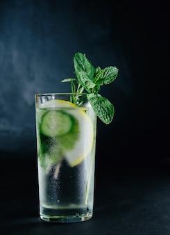 Bebida fresca de verão. água com gás desintoxicação de vidro saudável com limão, hortelã, alecrim e pepino em frasco de vidro sobre fundo escuro.