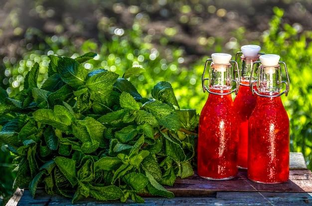 Bebida refrescante de verão e hortelã