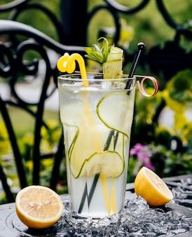 Bebida refrigerante com limão e estragão