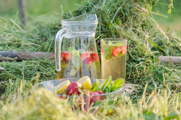 Bebidas caseiras naturais refrescantes de verão