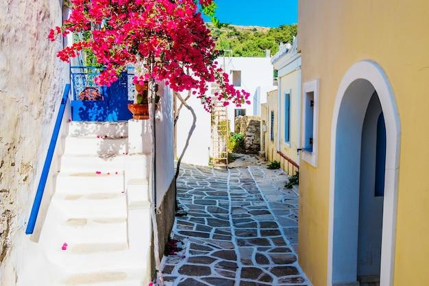 Beco cênico com lindas flores de buganvílias cor de rosa e paredes amarelas da casa. rua grega colorida em lefkes, ilha de paros