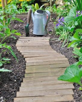 Beco de madeira em uma horta ao lado de tomateiros