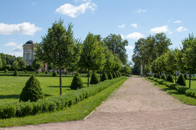 Beco do parque com caminho de pedra esmagada com árvores e arbustos aparados verdes