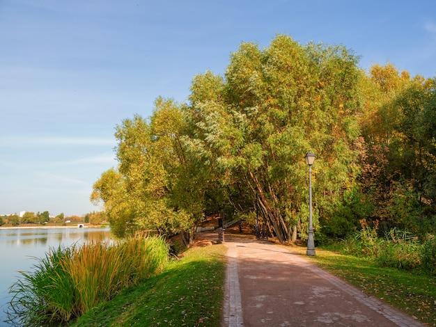 Beco ensolarado de outono com folhas vermelhas caídas em um belo parque vazio de moscou