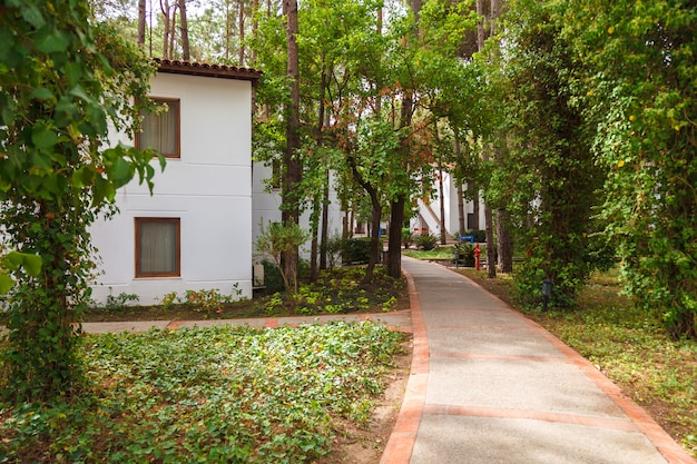 Beco entre as casas do hotel entre os pinheiros