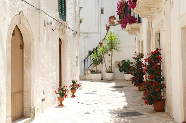 Beco florido em locorotondo com paredes brancas em apúlia, itália