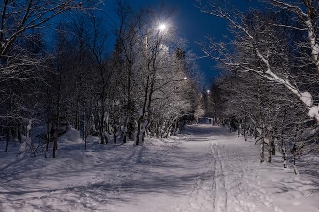 Beco iluminado por lanternas na noite de inverno parque com neve