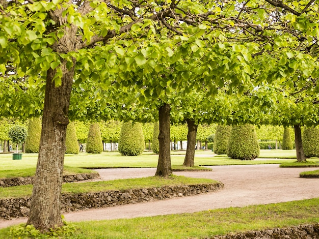 Beco no park summer garden, peterhof, rússia.