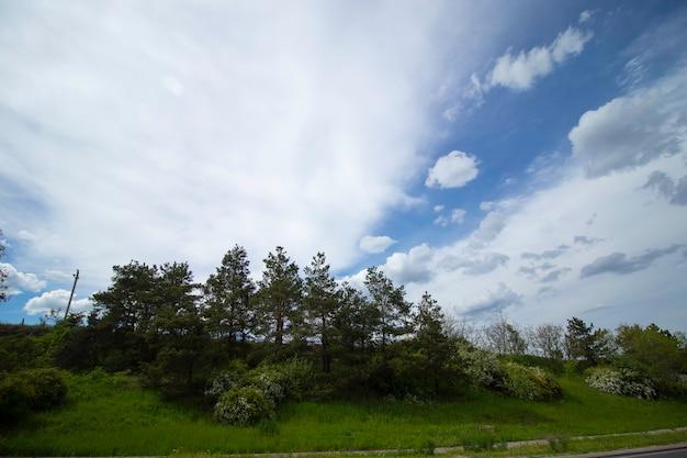 Beira da estrada e lindo céu nublado em movimento da janela do carro