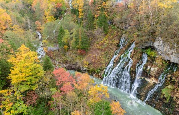 Bela cachoeira de shirahige e árvore colorida no outono