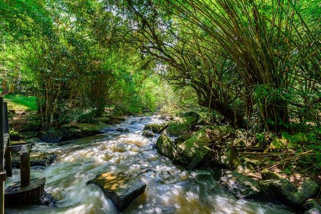 Bela cachoeira em natural