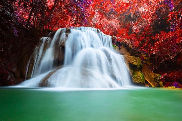 Bela cachoeira na floresta profunda