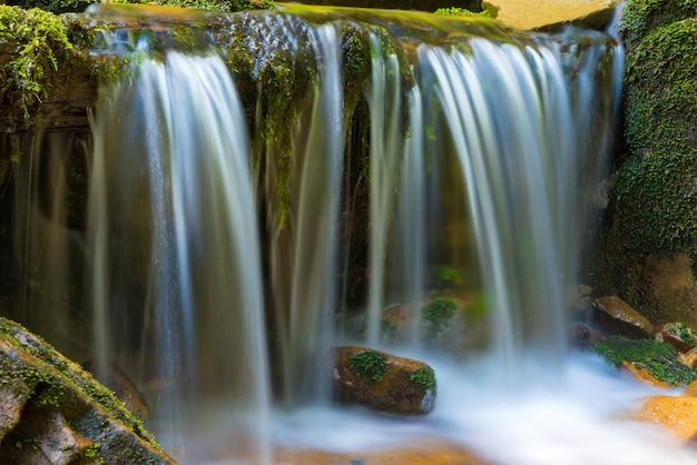 Bela cachoeira na floresta verde. cascata de água em movimento